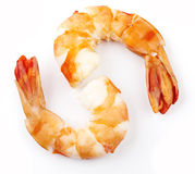 Cooked unshelled tiger shrimps Stock Photography