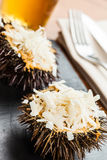 Cooked urchins Royalty Free Stock Photos