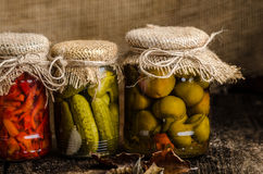 Cooked vegetables, pickles, homemade ketchup Royalty Free Stock Image