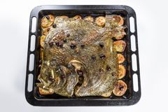 Turbot fish in baking pan oven with potatoes olives and aromatic royalty free stock photography