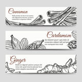 Cookery banners template with spices Royalty Free Stock Images