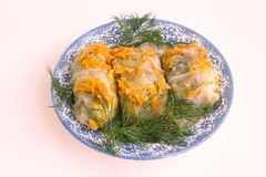 Cookery. High-calorie dish. Meat with cabbage Royalty Free Stock Image