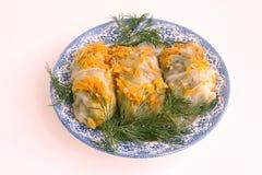 cookery prato de Alto-caloria Carne com couve imagem de stock royalty free