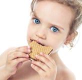 Cookie Stock Photos