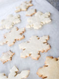 Cookie background Royalty Free Stock Photo