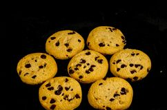 Fresh round sweet chocolate chip cookie`s in the dark. A cookie is a baked or cooked food that is small, flat and sweet. It usually contains flour, sugar and Royalty Free Stock Images