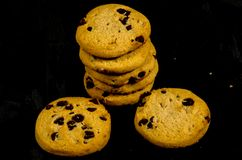 Fresh round sweet chocolate chip cookie`s in the dark. A cookie is a baked or cooked food that is small, flat and sweet. It usually contains flour, sugar and Royalty Free Stock Image