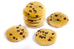 Fresh round sweet chocolate chip cookie`s  in the  light. A cookie is a baked or cooked food that is small, flat and sweet. It usually contains flour, sugar and Stock Photography