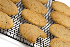 Cookie with bite on rack Stock Images