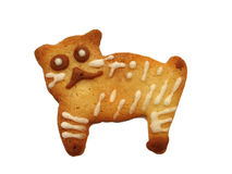 Cookie cat Stock Photos
