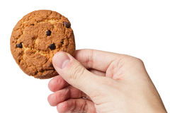 Cookie with chocolate pieces in hand Royalty Free Stock Images
