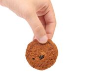 Cookie with chocolate pieces in hand Royalty Free Stock Image