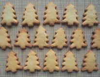 Cookie Christmas tree. Food background. Cookie Christmas tree. Food background Stock Photos