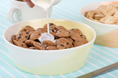 Cookie Crisp Royalty Free Stock Image