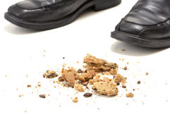 Free Cookie Crumbs Stock Images - 25459574