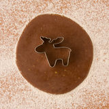 Cookie cutter reindeer. Gingerbread with cookie cutter reindeer Royalty Free Stock Photos