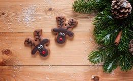 Cookie da rena Imagens de Stock Royalty Free