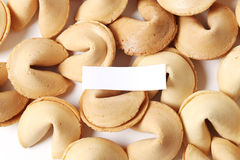 Cookie de fortuna Fotografia de Stock
