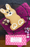 Cookie do coelho do pão-de-espécie da Páscoa Imagens de Stock Royalty Free