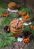 Cookie do Natal para Santa Fotos de Stock Royalty Free