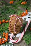 Cookie do Natal para Santa Imagens de Stock