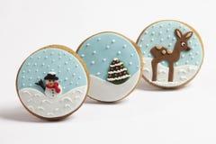 Cookie do pão-de-espécie Foto de Stock Royalty Free