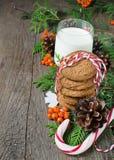Cookie e leite do Natal para Santa Fotos de Stock