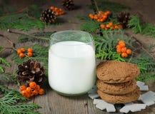 Cookie e leite do Natal para Santa Imagem de Stock Royalty Free