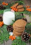 Cookie e leite do Natal para Santa Fotografia de Stock Royalty Free