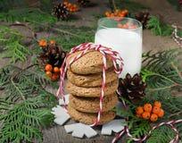 Cookie e leite do Natal para Santa Fotos de Stock Royalty Free