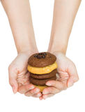 Cookie on hand Stock Photography