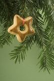 cookie hanging tree under Στοκ Φωτογραφίες