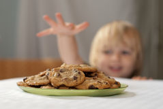 Cookie temptation Royalty Free Stock Photography