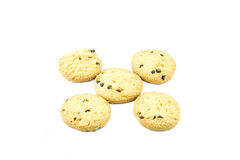 Cookie isolated on white. Breakfast food  junk  sugar sweet Royalty Free Stock Images