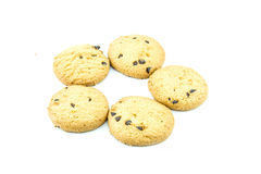Cookie isolated on white. Breakfast food  junk  sugar sweet Stock Photography