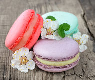 Cookie macarons Stock Image