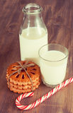 Cookie with milk Royalty Free Stock Photo