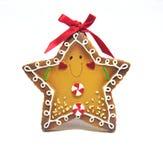 cookie miodownik Obraz Royalty Free