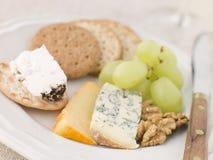 cookie ser płytki Fotografia Royalty Free