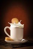 Cookie Splash Stock Photo