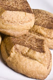 Cookie time. Close up of some very delicious snickerdoodle sugar cookies just out of the warm oven Royalty Free Stock Image