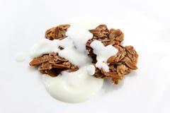 Cookie and Yogurt Royalty Free Stock Photos