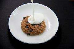 Cookie and Yogurt Stock Photography