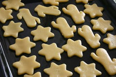 Cookies. Ready for cooking.  close up royalty free stock photo