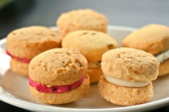 Cookies. A plate full of gourmet sweet biscuits with cream centers Stock Photography
