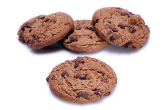 Cookies. With chocolate on white background royalty free stock image