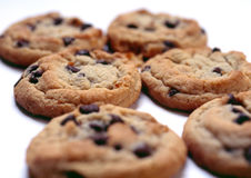 Cookies. Chocolate chip cookies royalty free stock photography