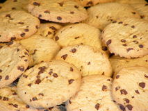 Cookies. A close up view of a pile of chocolate chip cookies royalty free stock image
