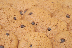 Cookies. Just backed cookies with chocolate Royalty Free Stock Image