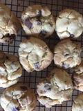 Cookies Arkivfoto